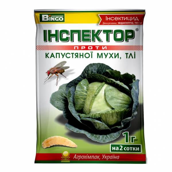 Інспектор проти капустяної мухи, тлі